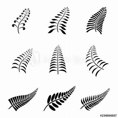 Fern Tattoo Maori Leaf Zealand Koru Tribal