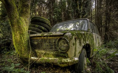 #nature, #trees, #forest, #leaves, #car, #lada, #russian