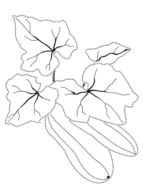 coloring page zucchini