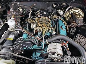 1977 Pontiac Trans Am - Factory Fresh  Part 1