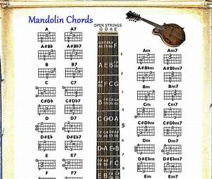 Mandolin Chords Chart Note Locator Fretboard Small