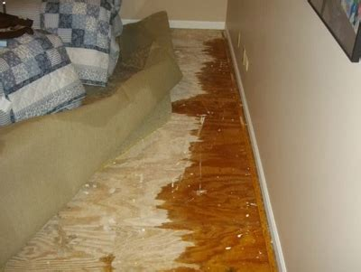 Water Damage  Northbrook Il  Castino Painting And Home. Counseling Psychology Programs In California. Using Food Grade Hydrogen Peroxide. Cheap Customizable Water Bottles. Crossroads Recovery Center Gulfport Ms. A Trip Through Our Solar System. Hair Schools In Chicago Stock Picking Systems. Www Marlboro K12 Nj Us Womens Hair Transplant. Can I Order Contact Lenses Online