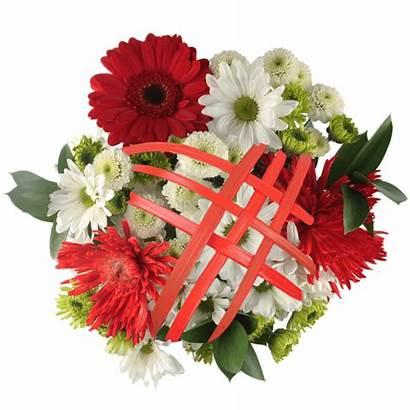 Christmas Flowers Flower Bouquets Sensation Globalrose Xmas