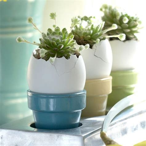 recycling egg shells  miniature vases green easter