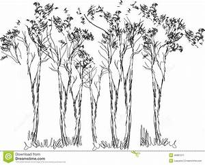 Sketch of trees stock vector. Image of simple, decoration ...