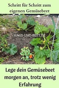 Rasen Umgraben Beet Anlegen : lege dein gem sebeet morgen an trotz wenig erfahrung ~ Watch28wear.com Haus und Dekorationen