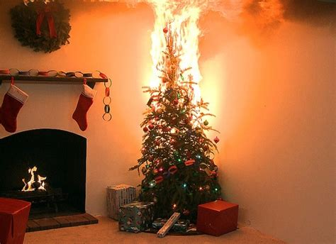 top 12 christmas tree and lighting safety tips