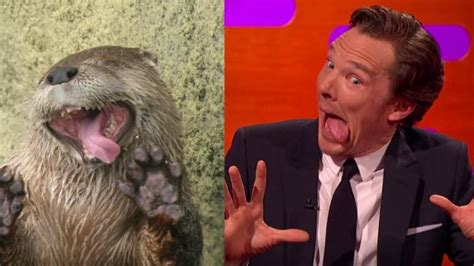 Benedict Cumberbatch Otter Meme - benedict cumberbatch matched his facial expressions to an otter meme while his costar johnny