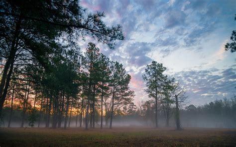 landscape, Mist Wallpapers HD / Desktop and Mobile Backgrounds