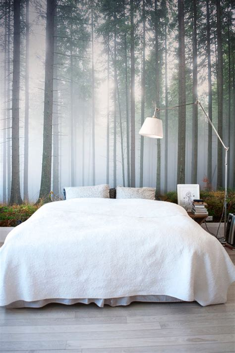 Forest Wallpapers That Will Breathe Life Into Your Home
