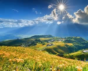 Summer Flowers Desktop Wallpaper Mountains