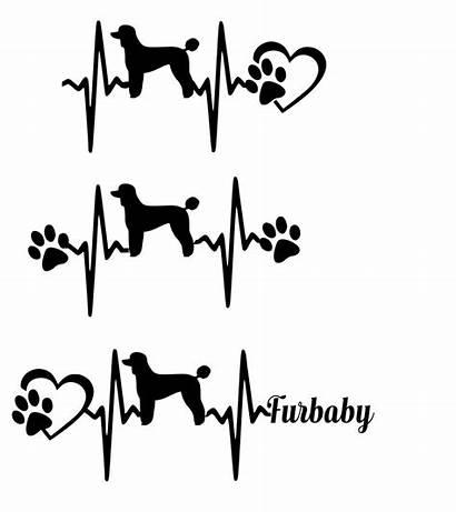 Svg Poodle Husky Heartbeat Standard Malamute Cut