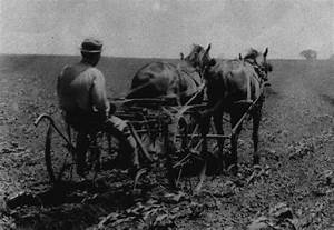 Photos of the early 1900s | View of Farming in the Early ...