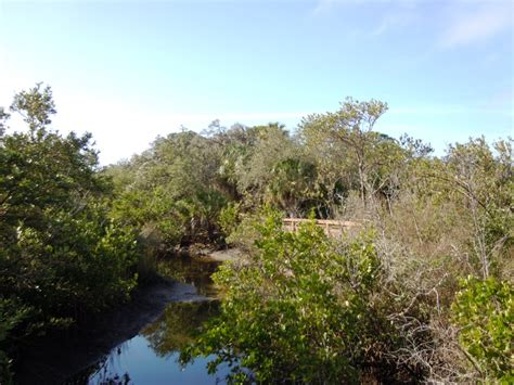 Hammock Park Dunedin by Hammock Park Dunedin Florida S Best Kept Secret