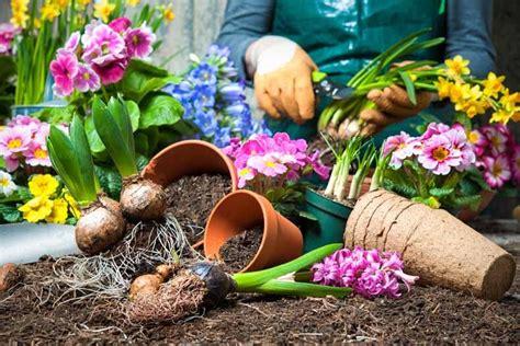 Blumenbeet Im Frühling So Wird Ihr Garten Ein Hingucker