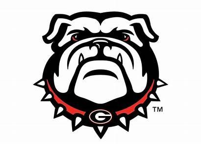 Georgia Bulldog Mascot Clipart Bulldogs Uga Football