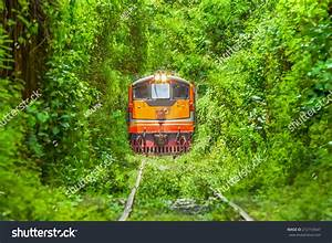 Logistic Train Running On Natural Train Stock Photo 212154547