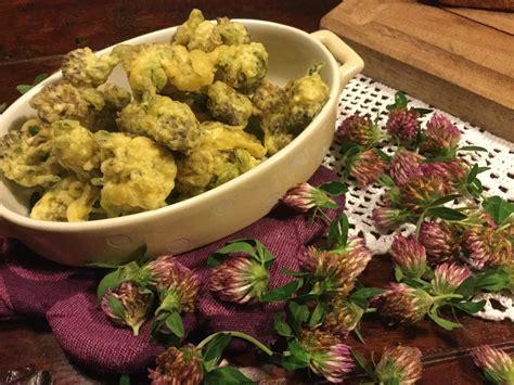 fiori di trifoglio fiori di trifoglio in pastella il pentolino smaltato