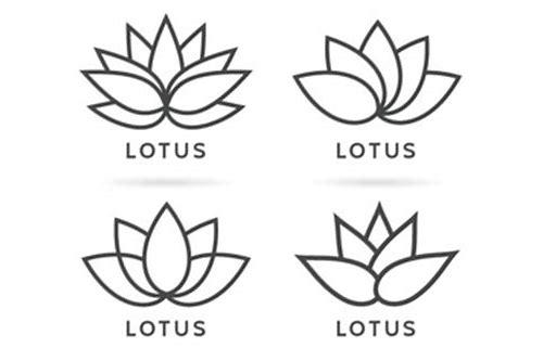 flor de lotus branco baixar de imagem