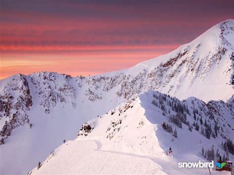 snowbird mountain resort skiing snowboarding