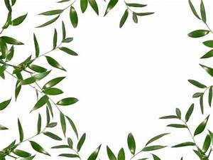Green Leaves Borders Clipart