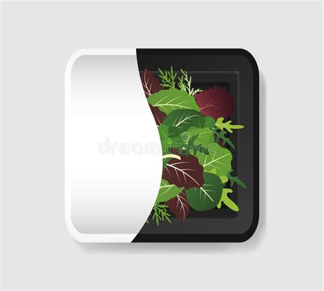 There is an option to switch off the filling or display your own. Salad Mix Stock Illustrations - 1,249 Salad Mix Stock ...