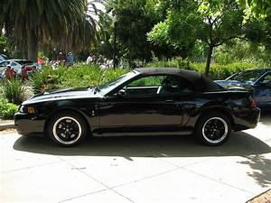 2002 Ford Mustang Cobra SVT Convertible '5PFG328' 1 | Flickr