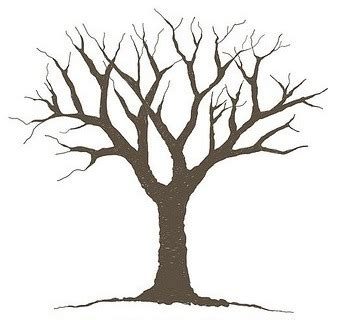 Tree Template Printout by Tree Outline Printable Clipart Best