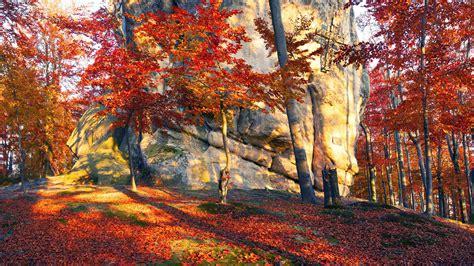 Autumn 4k Uhd Wallpapers by Wallpaper 3840x2160 Ukraine Stones Trees