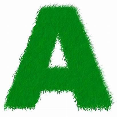 Letter Transparent Alphabet Pixabay Grass Similar Pngall