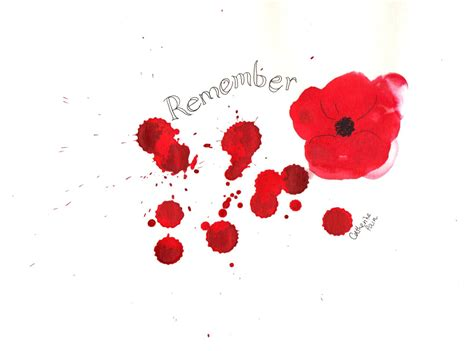 remberance poppy 70 best remembrance day greeting pictures and photos