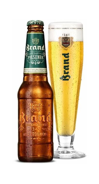 Pilsener Bier Beer Pils Meer Gebrouwen Thuis