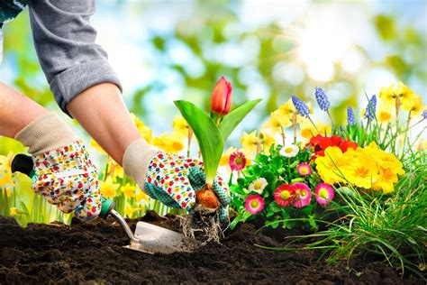 9 Tips To Prepare Your Garden For Summer