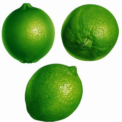 Lime Lemon Transparent Persian Key Purepng Pngimg