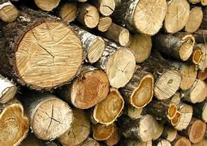 Poids D Une Stère De Bois : le bois de chauffage directement chez vous en gironde ~ Carolinahurricanesstore.com Idées de Décoration