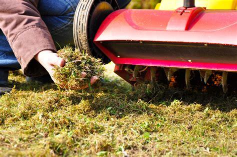 Wann Dünge Ich Meinen Rasen by Wann Vertikutieren Und Wie Wird 180 S Gemacht Akkurasenm 228