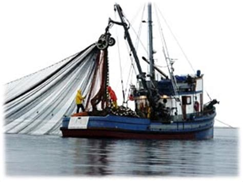 Boat Loans California by California Fisheries Fund Press