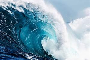 Surviving the Tidal Wave | eyeforpharma