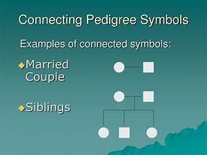 Ppt Pedigree Charts Powerpoint Presentation Free