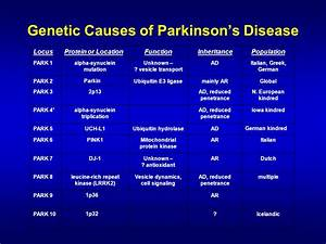 Parkinson's Disease: A Brief Overview - ppt video online ...