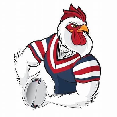 Roosters Sydney Rooster Under Logos Valleys Team