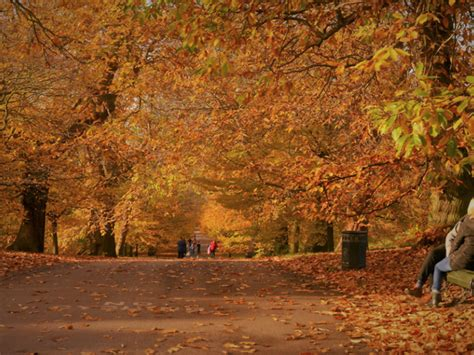 Amazing Autumn Events And Things To Do In London In September 2021