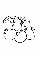 Cherries Coloring Pages Three Printable Cherry Wiring Diagram Dayton Bunch A4 Fruits Relay Categories Coloringonly sketch template
