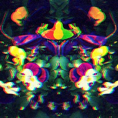 Pansy Moving Giphy Trippy Pixel Gifs Artists