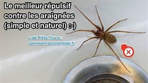 Faire Fuir Les Araignées : le meilleur r pulsif contre les araign es simple et naturel truc et astuces pinterest ~ Melissatoandfro.com Idées de Décoration
