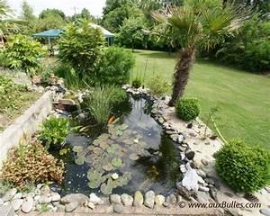 bassin de jardin la visite du bassin de jardin de pascal With superb amenagement jardin avec bassin 5 bassin