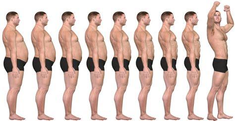 perte de graisse