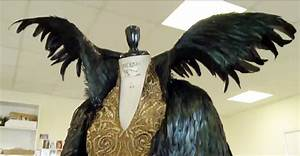Evil Queen Ravena's Transormation Cape - Snow White and ...