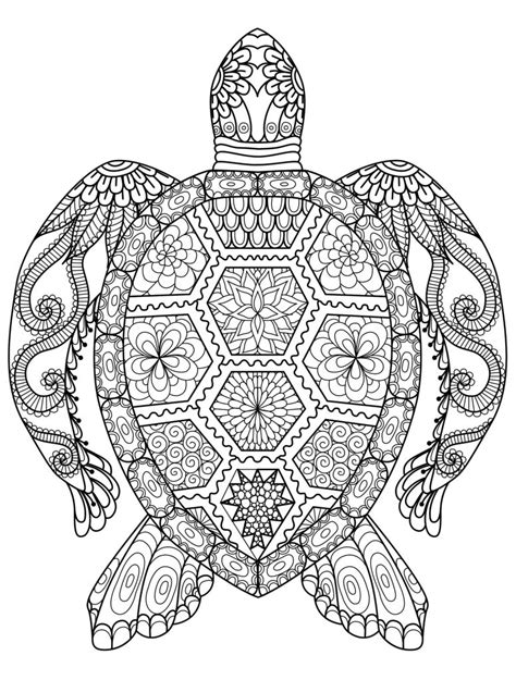adult coloring pages animals turtle
