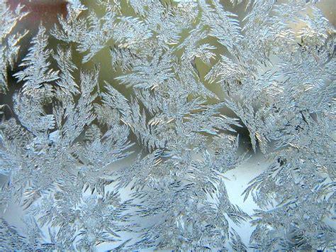 wallpapers  window frost texture